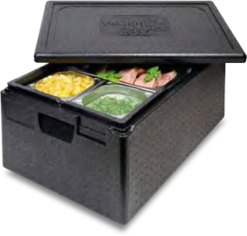 Goldline Industries Thermo Future Box Insulated Food
